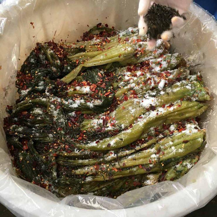 乳酸菌 自然発酵 うまもんの漬物 高菜古漬